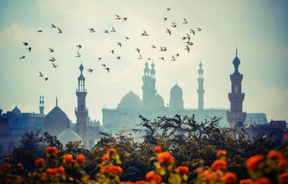 Cairo Time - 4 Days- 3 Nights